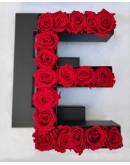 Kutija s poklopcem u obliku slova E.