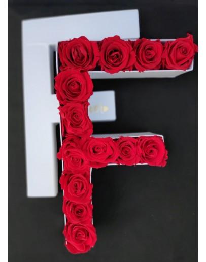 Kutija s poklopcem u obliku slova F.