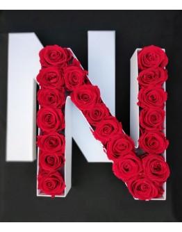 Kutija s poklopcem u obliku slova N.