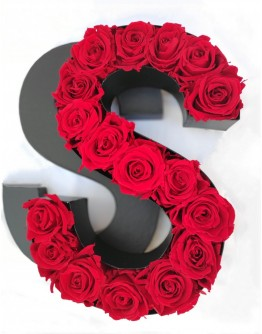 Kutija s poklopcem u obliku slova S.